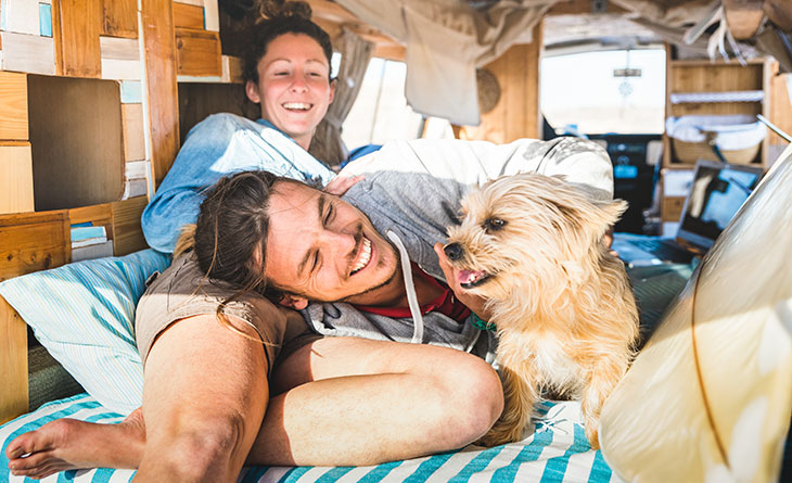 VanLife With Your Dog