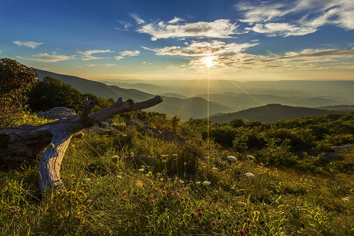 Is Shenandoah National Park Worth Visiting