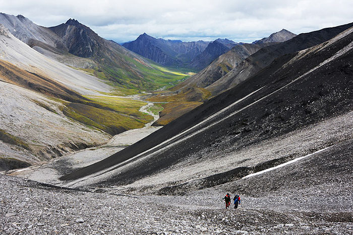 arctic national park